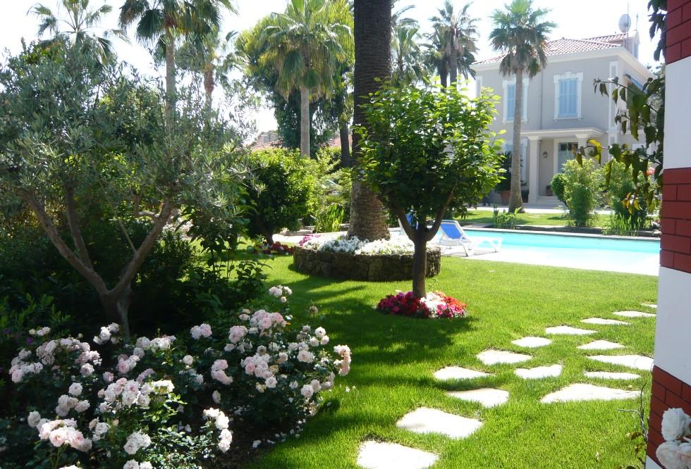 massif jardin palmier nice maison design. Black Bedroom Furniture Sets. Home Design Ideas